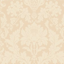 Buff Print Wallcovering by Cole & Son